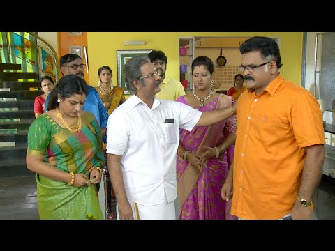 Priyamanaval Serial 28/11/2015 SunTv Episode Online