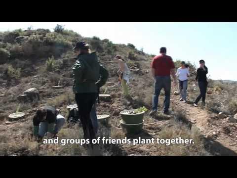 (English subtitles) Obra Social de Catalunya Caixa reforestación en Balsareny con Groasis waterboxx