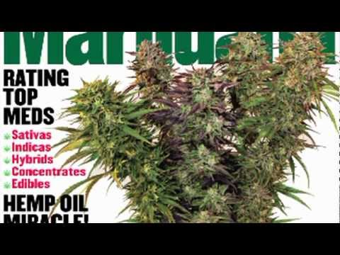 HIGH TIMES Medical Marijuana - Winter 2011 - 2012