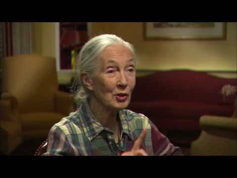 I Remember | Program | #2007 -- Jane Goodall, Ph.D.