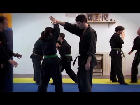 A fifteen-level martial art