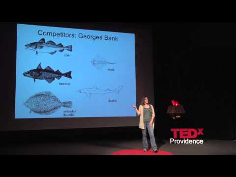 To Save Our Fisheries, Eat Like a Fish: Sarah Schumann at TEDxProvidence 2013
