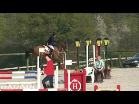 ♥ Campeador LS- jumping horse  by Fergar Mail