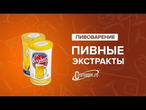 Как сделать пивной экстракт - Spbteplichka.ru