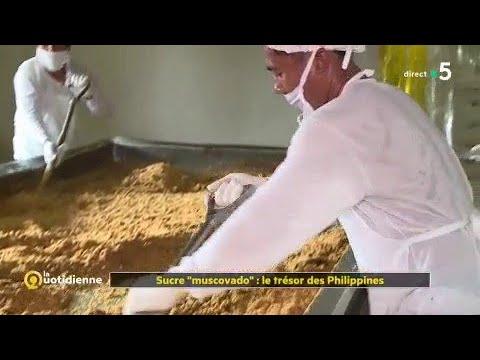 """Sucre """"muscovado"""" : le trésor des Philippines"""