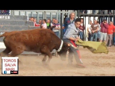 ONDA PASCUA TAURINA. dos cerriles y vacas