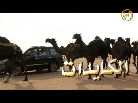 جديد منقية 2014   للشيخ  /  عمر محمد بن خشنان المخاريم الدوسري