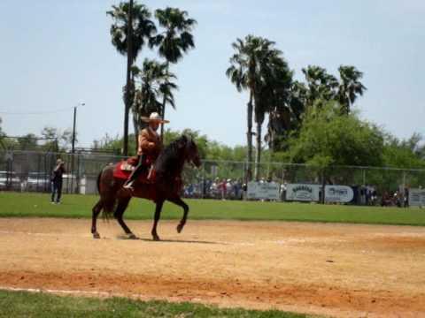 Azteca Horse Dancing