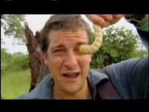 Man vs. Wild - Eating Giant Larva