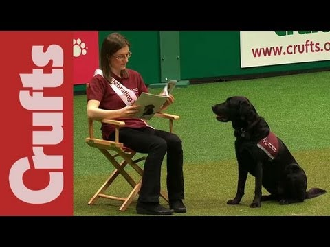 Hearing Dogs Display - Crufts 2012