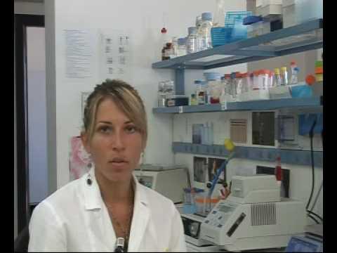 Okkupati - LAUREARSI IN BIOTECNOLOGIE - Puntata del 06-09-2009