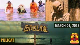 Naadodi 01-03-2015 Thanthitv Show | Watch Thanthi Tv Naadodi Show March 01, 2015