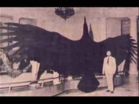 Paranormal Creatures -RAGMrvtC3pg