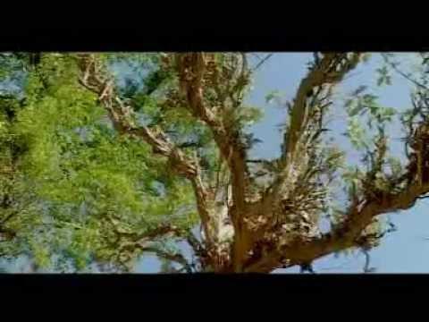 deuda geet bajura's Prakash Thapa's Vedios