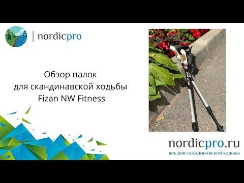 Fizan NW Fitness / Палки для скандинавской ходьбы