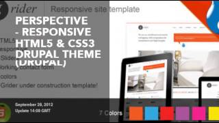 Professional Drupal CMS Themes