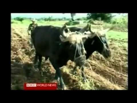 Life Inside Cuba 1 of 7 . BBC World News Documentary