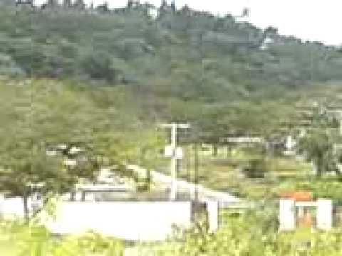 Deforestación en Nuevo Cuscatlán
