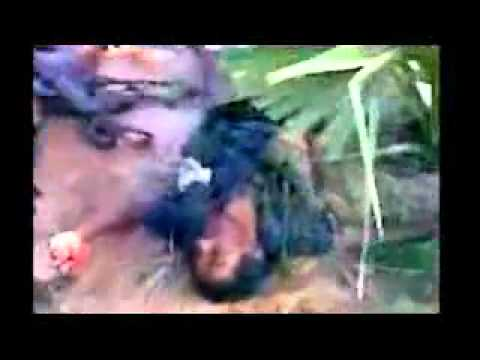 Sri Lanka Killing Fields - Channel 4 UK Part 3