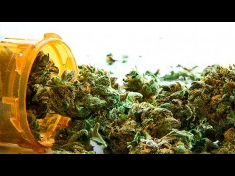 Marijuana Shows Medical Value, Feds Don't Give A Sh*t
