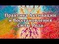 Мощная Практика Активации и Восстановления Силы Рода!!!