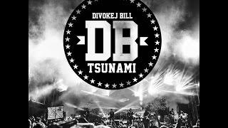 4 - Divokej Bill - Tsunami