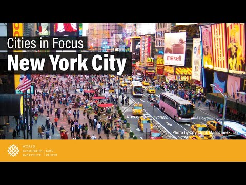 Cities in Focus | New York City