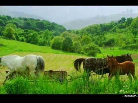 VIDEOCLIP Traseu MTB Sighisoara - Prod - Copsa Mare - Biertan
