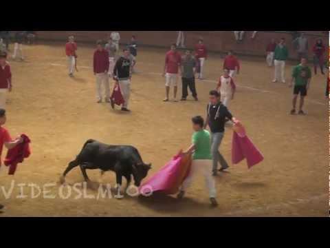 ARNEDO vacas en plaza 2 octubre 2012