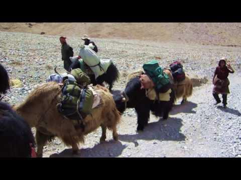 Trekking to Himalayas