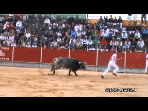 Concurso de Recortes Velilla de San Antonio 2012