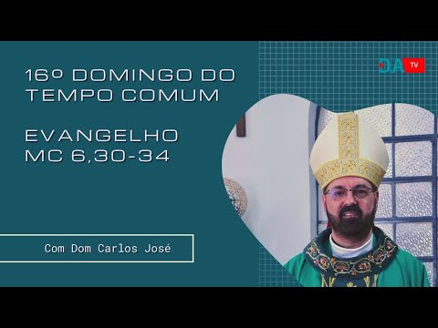 16º DOMINGO DO TEMPO COMUM