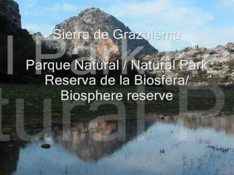 Sierra de Grazalema - Parque Natural