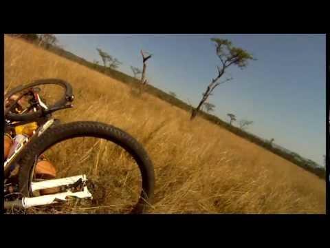 Antilopa oborila biciklistu