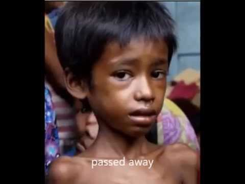 Rohingya SOS
