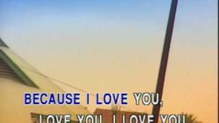 Because I Love You - karaoke