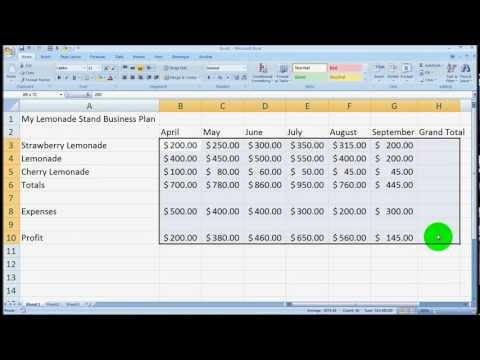 Microsoft Excel Overview for Beginners Tutorial - Excel 2003, 2007, 2010