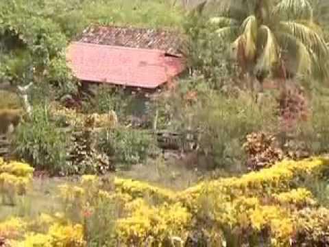 Isla de Ometepe Reserva Biosfera