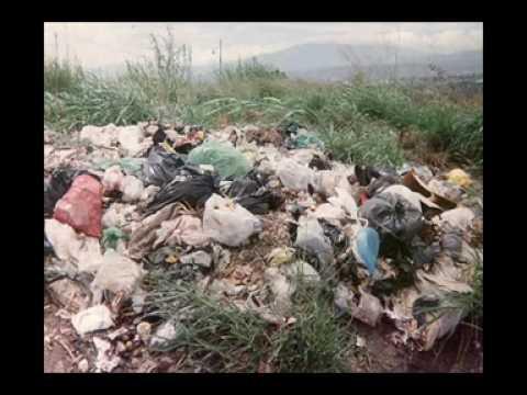 programa de la contaminacion del suelo UEPOM