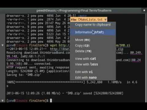 Final Term Terminal Emulator Demo For Linux