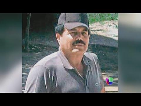El futuro del Cártel de Sinaloa -- Noticiero Univisión