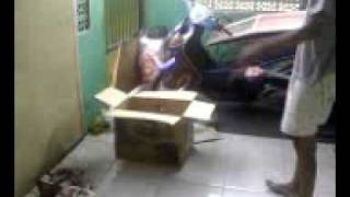 Paket Mencurigakan di Teras Rumah.mp4 view on youtube.com tube online.