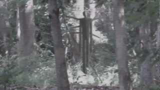 """The Slenderman"" Movie Trailer"