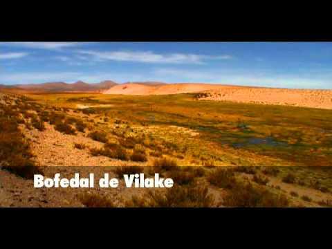Proyecto Minero Catanave, destrucción del Ecosistema. Región de Arica y Parinacota, Chile.divx