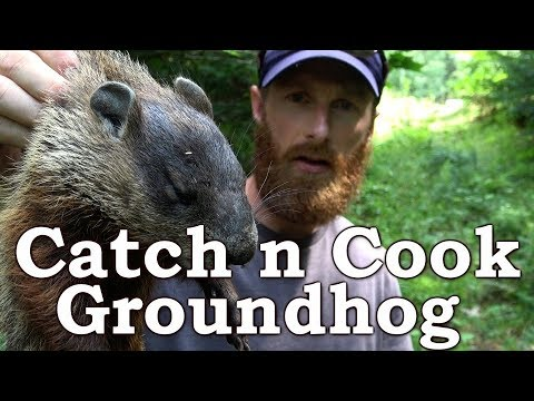 Catch n Cook Clean Groundhog | EATING THE SKIN?!? | The Wilderness Living Challenge 2017 | S02E03