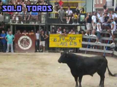 |SOLOTOROS|  Cheste 2010 (Bous al Carrer)
