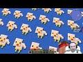 Фрагмент с начала видео КУРИНЫЙ ЛАКИ СКАЙБЛОК С ЛАКИ БЛОКАМИ!!! #54