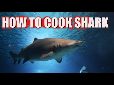 Three Ways to Cook Shark Meat-Best How to Recipes (Catch and Eat)