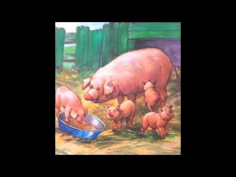 Μαθαίνω τα ζώα.m4v