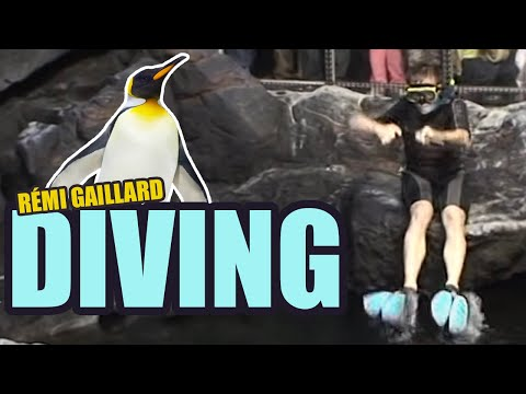 Diving (Rémi GAILLARD)